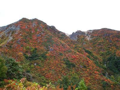 朝日岳周辺の紅葉