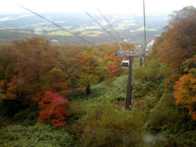 マウントジーンズの展望ロープウェイ中腹~山頂周辺