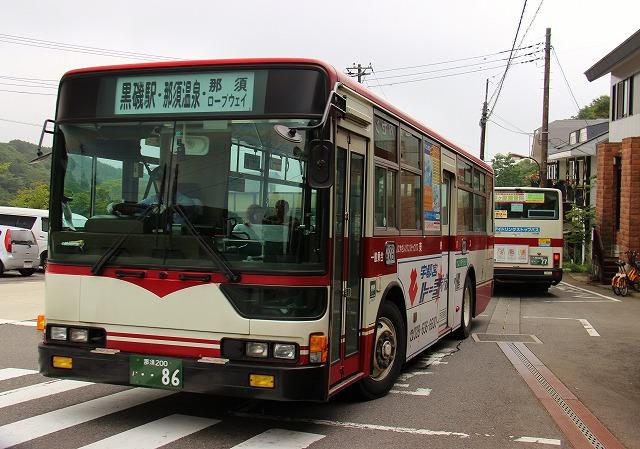 s557.jpg