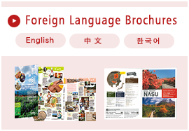 Foreign Language Brochures